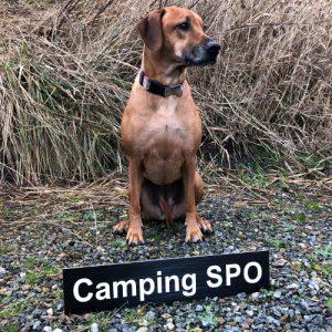 Elly - Camping SPO